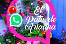 """Blog """"El patio de Ariadna"""": propuestas creativas para sobrevivir a la cuarentena en comunidad"""
